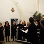 Concert-Bouches-Rouges-Fabras (4)