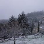 neige2016-Fabras (1)