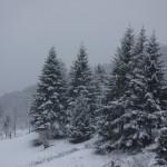 neige2016-Fabras (2)